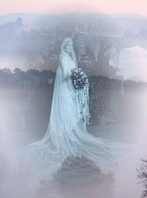 Wedding Dream Meanings W Dreams Dream Dictionary dreaminglife